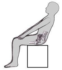 back tail bone pain in women